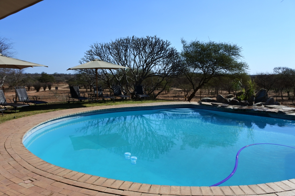 Piscine, Tshukudu Game Lodge, Limpopo, Afrique du Sud.