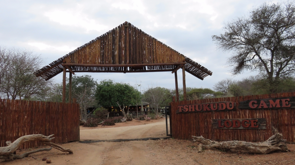 Tshukudu Game Lodge, Limpopo, Afrique du Sud.
