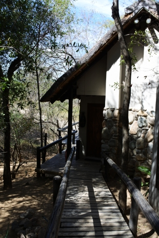 Lodge, safari, Kuname River Lodge, South Africa