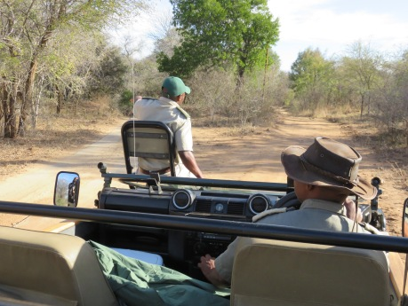 safari, Karongwe Game Reserve, South Africa, Limpopo