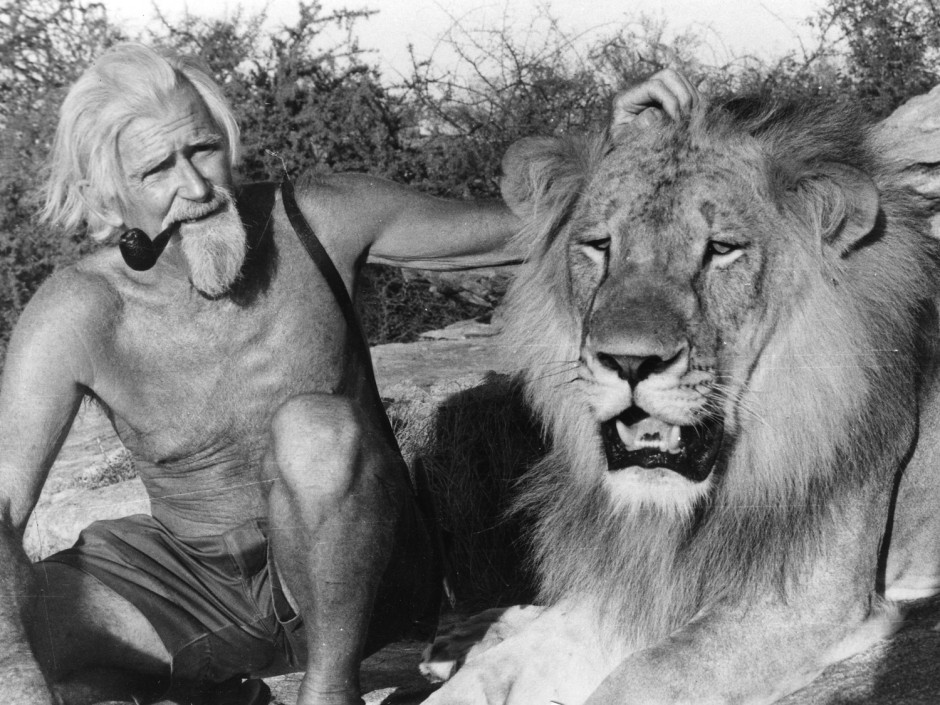 Born Free, George Adamson, Elsa lioness, Kenya, Africa, wildlife, Kora Reserve, lions, assassination
