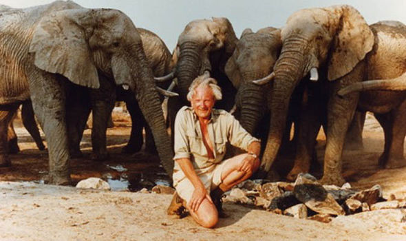 David Shepherd, elephants, éléphants, painter, peintre, artist, conservationist, wildlife, DSWF