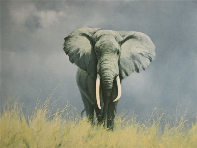 painting, David Shepherd, Wise Old Elephant, Kenya