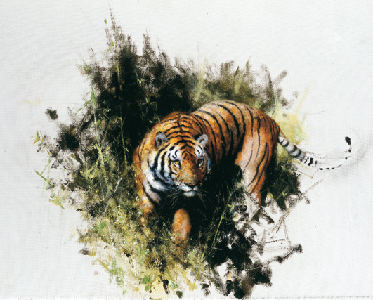 David Shepherd, artist, tiger, drawing