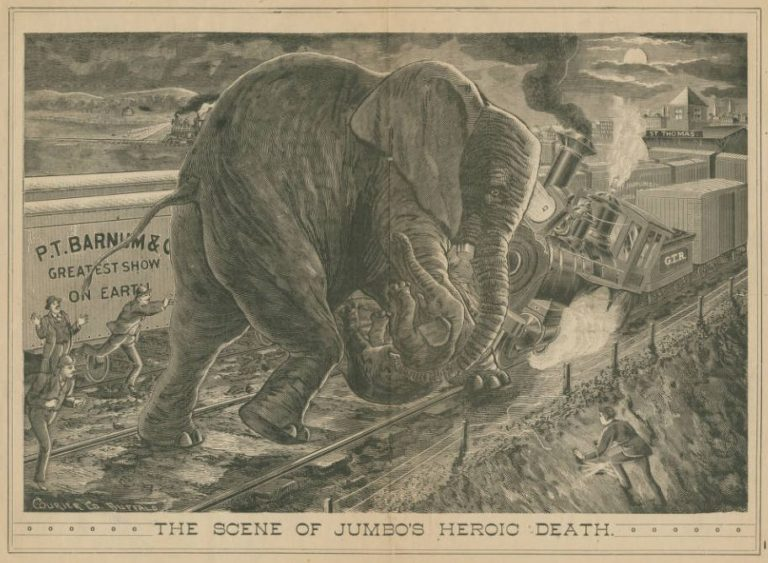 Jumbo's heroic death, elephant, Barnum Circus, train accident, St. Thomas Ontario