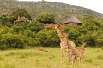 Leshiba Wilderness, private reserve, Venda Village Lodge, Limpopo, South Africa