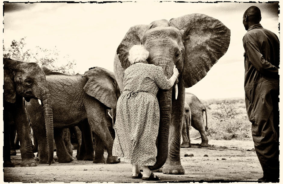 Daphne Sheldrick, mother of elephants, Mama Tembo, DSWT, Kenya