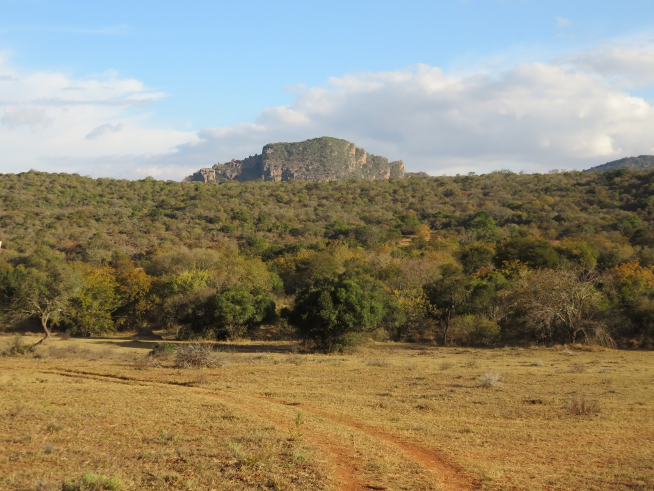 Leshiba Wilderness, private reserve, Soutpansberg, South Africa