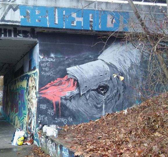Pavel Cisarovsky, Hope, rhino, poaching, street art, Czech Republic, Prague