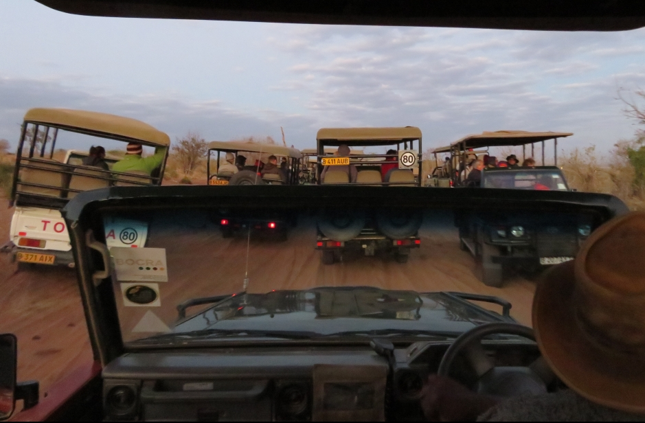 4x4, traffic jam, Chobe National Park, Botswana