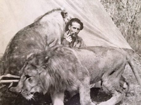 lions, Norman Carr, Return to the Wild