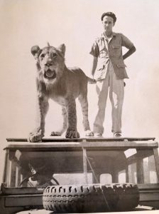 Norman Carr, lions, Big Boy, Return to the Wild