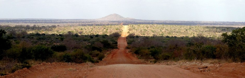 East Tsavo, National Park, Kenya, Africa