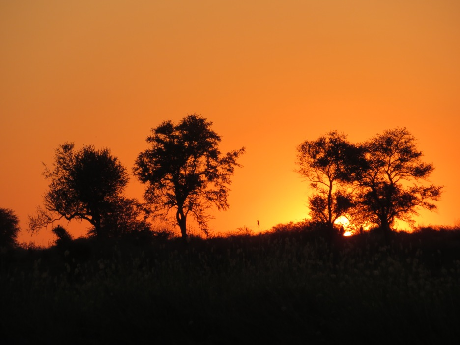 sunset cruise Okavango, Namibia